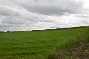 Rashcrook, Birnie, Elgin, Moray, IV30 8SW